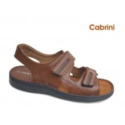 Cabrini p47 Ταμπά δέρμα